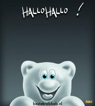 Hallo Hallo !