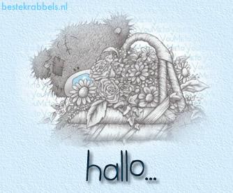 hallo...
