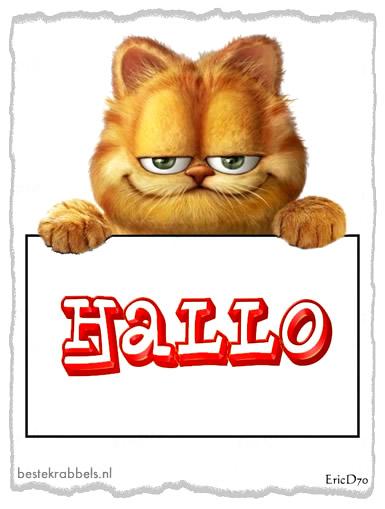 Garfield plaatje 5