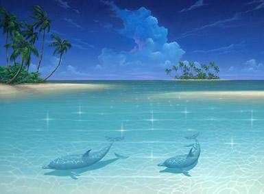 Dolfijnen plaatje 6