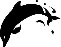 Dolfijnen 6