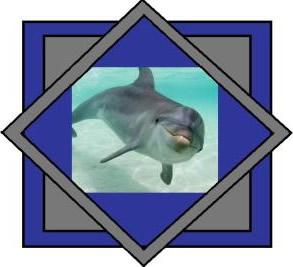 Dolfijnen plaatje #2426