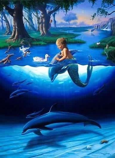 Dolfijnen plaatje 4