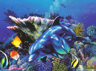 Dolfijnen 8