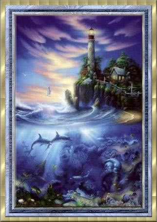 Dolfijnen 14