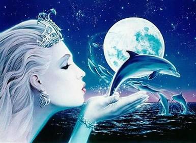 Dolfijnen 2