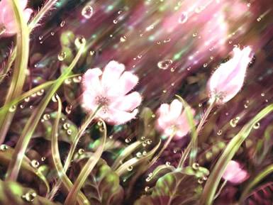 Bloemen plaatje 6