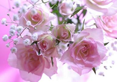 Bloemen plaatje #2601