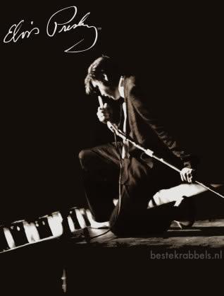 Elvis Presley plaatje 8