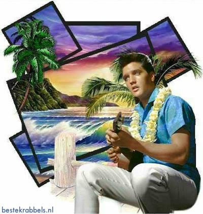 Elvis Presley plaatje 6