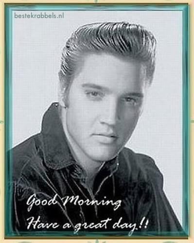 Elvis Presley plaatje #1036