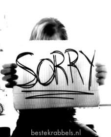 Sorry plaatje 8