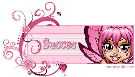 Succes! plaatje 9