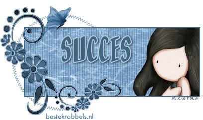 Succes! plaatje 14