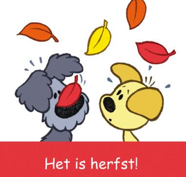 Het is herfst!