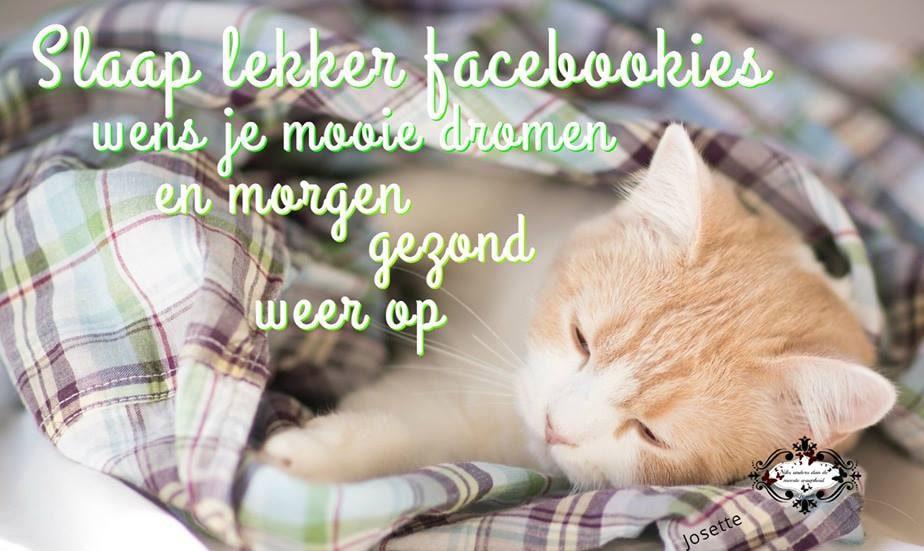 Slaap lekker facebookies wens je mooie dromen en morgen gezond weer op