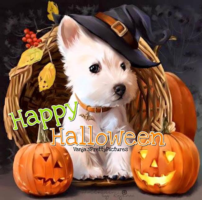 Halloween krabbels voor facebook