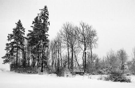 Winter plaatje #7469