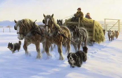 Paarden plaatje 4
