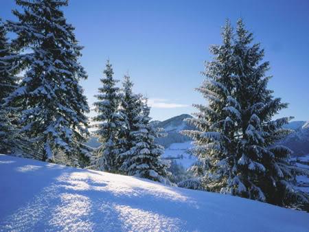 Winter plaatje 7