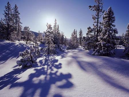Winter plaatje 10