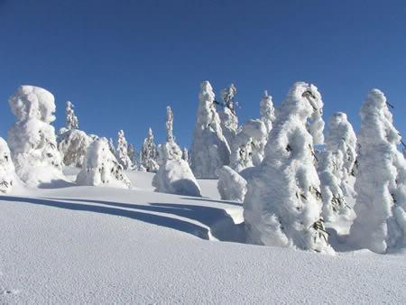 Winter plaatje #7526