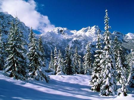 Alpen plaatje 3