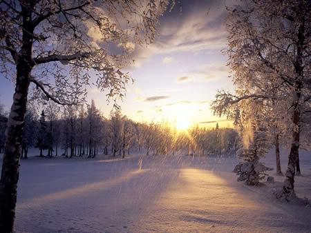 Winter plaatje #7530