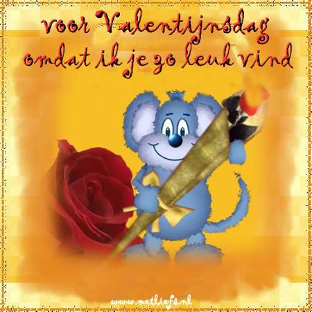 voor Valentijnsdag omdat ik je zo leuk...