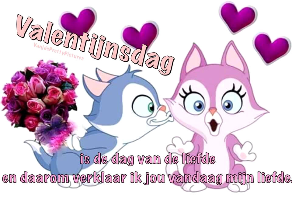 Valentijnsdag is de dag van de liefde en daarom verklaar ik jou vandaag mijn liefde