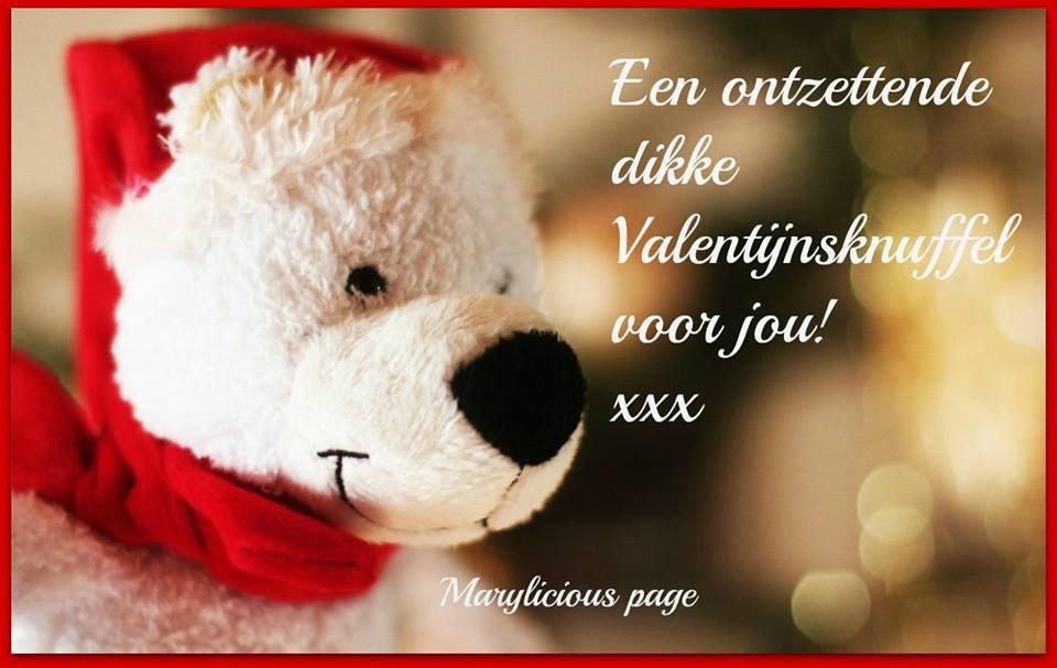 Een ontzettende dikke Valentijnsknuffel voor jou! xxx
