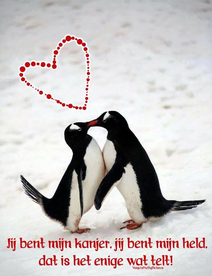 Valentijnsdag plaatje 6