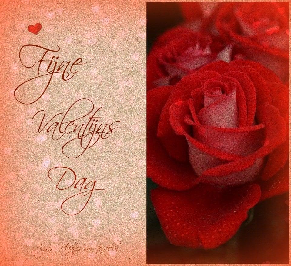 Valentijnsdag plaatje 7