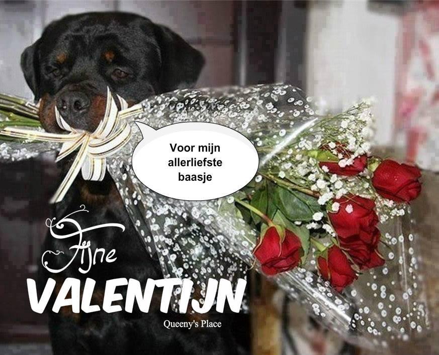 Valentijnsdag plaatje 8