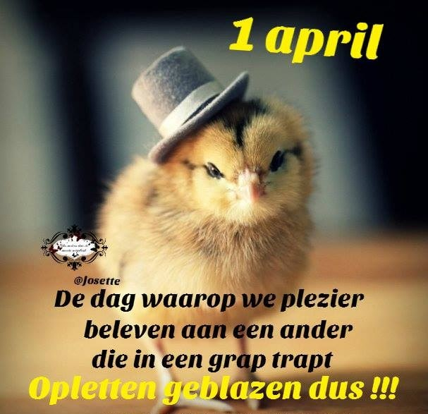 1 april plaatje 4