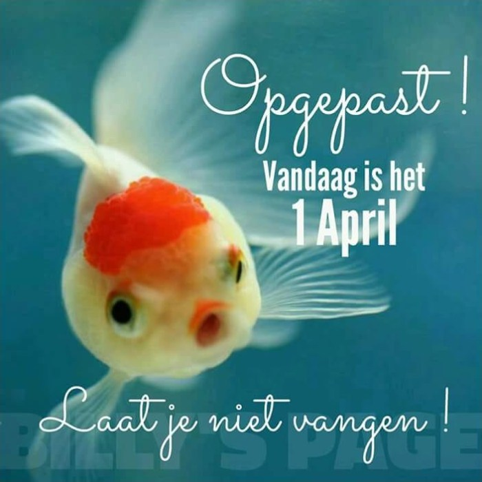 1 april plaatje 1