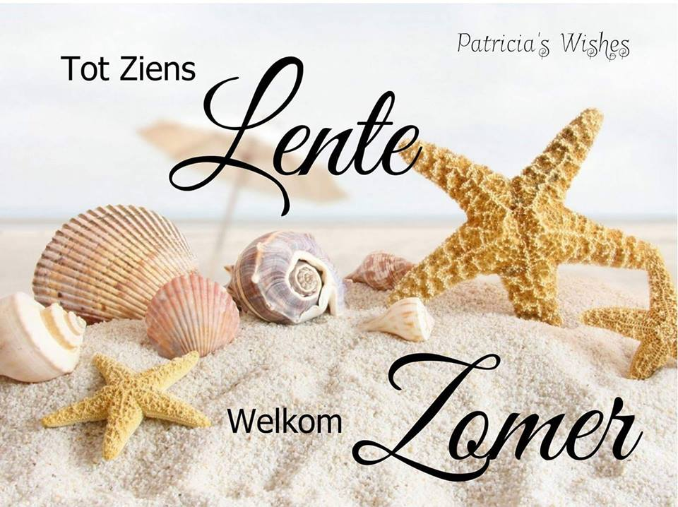Zomer plaatje 5