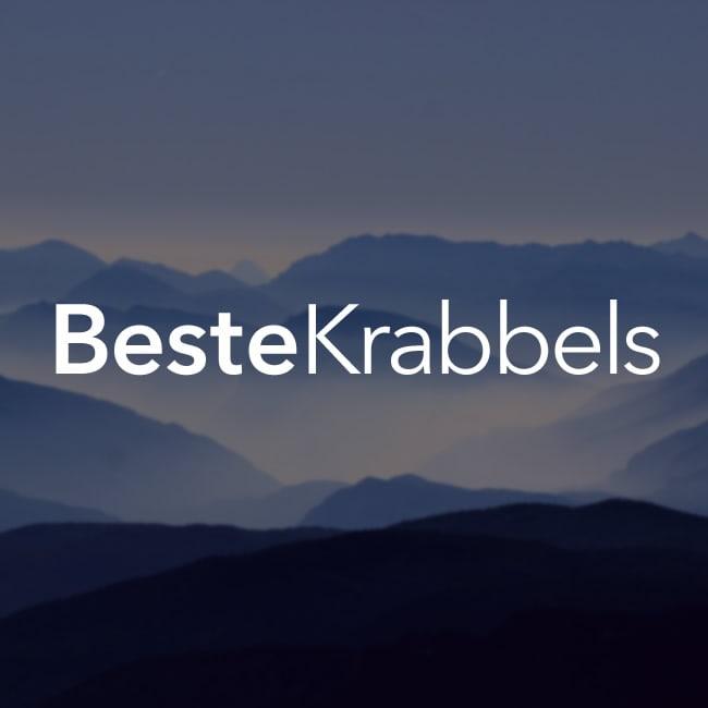 Stoere Puppy Kijkt Boos