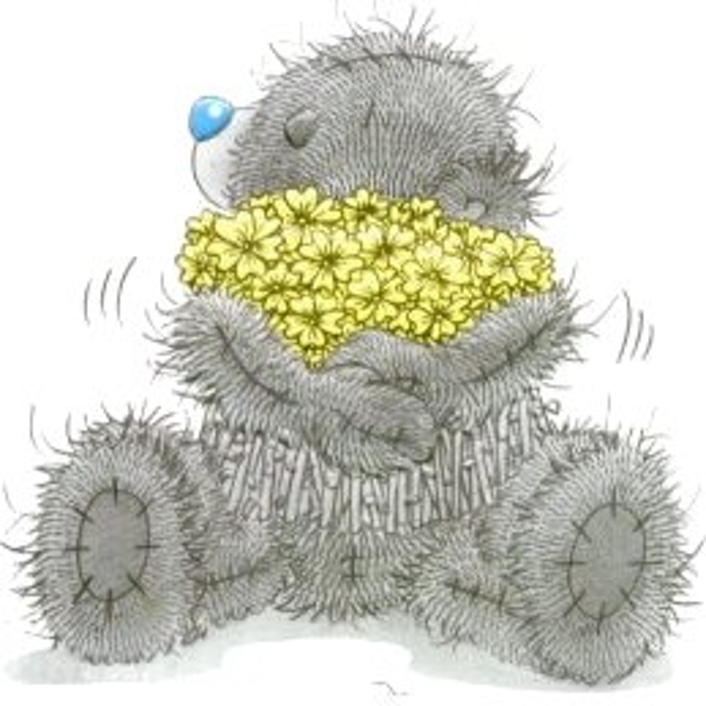 Teddyberen plaatje 11