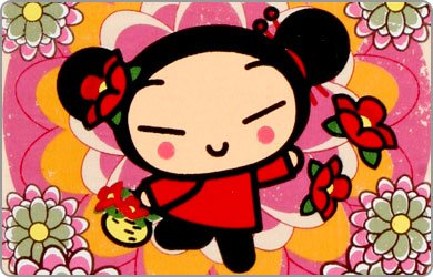 Pucca 13