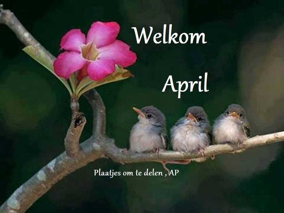 Welkom April