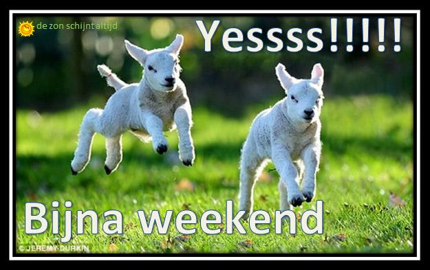 Yessss!!! Bijna weekend
