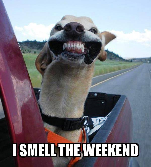 I smell the weekend
