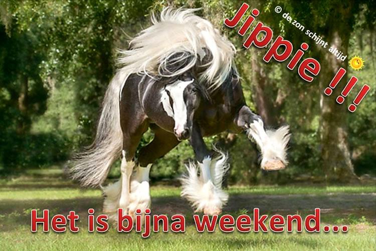 Jipiie!!! Het is bijna weekend...