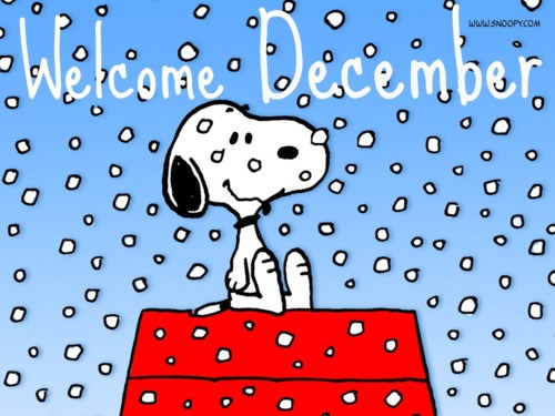 December plaatje 13