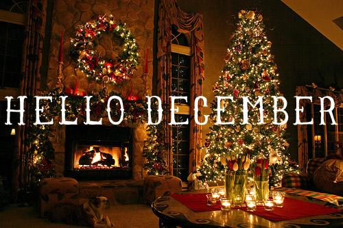 December plaatje 14