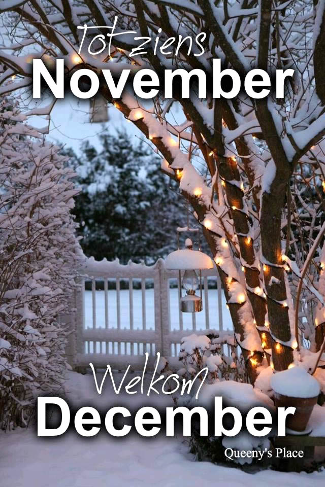Tot ziens November, Welkom December