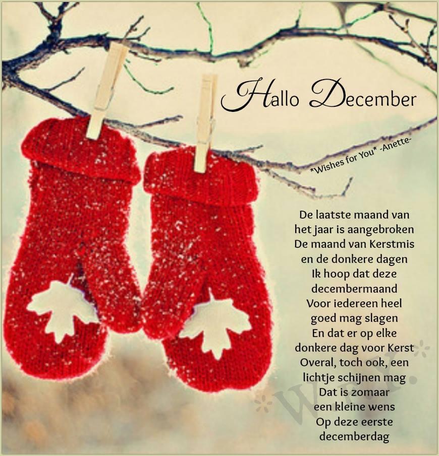 Hallo december De laatste...