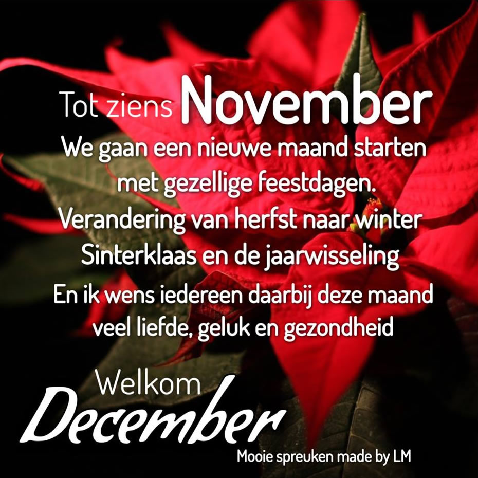 Tot ziens November We gaan een...