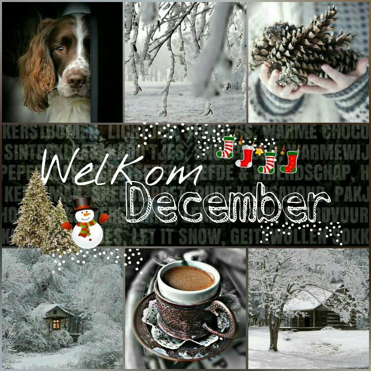 December plaatje 3